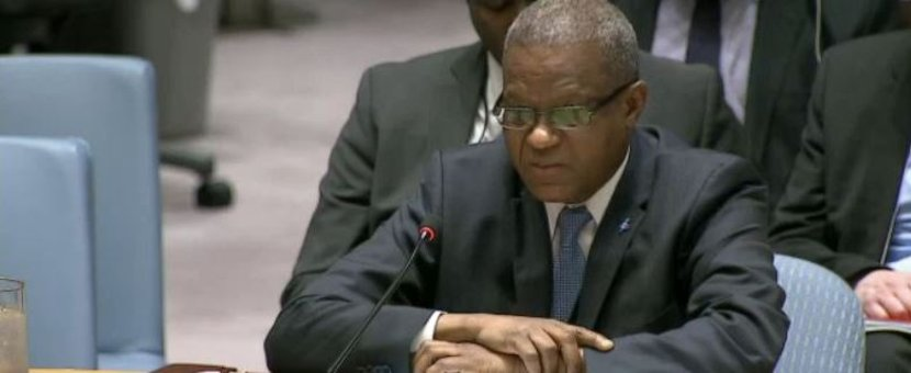Statement by the Head of MONUSCO, Maman Sambo Sidikou, to the UN Security Council